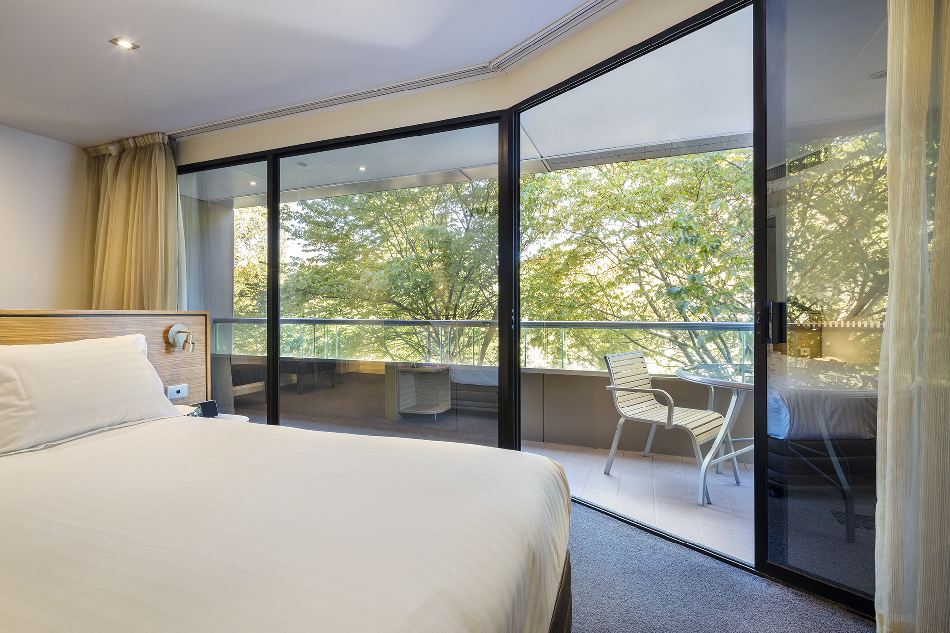 Deluxe Suite with balcony and park view