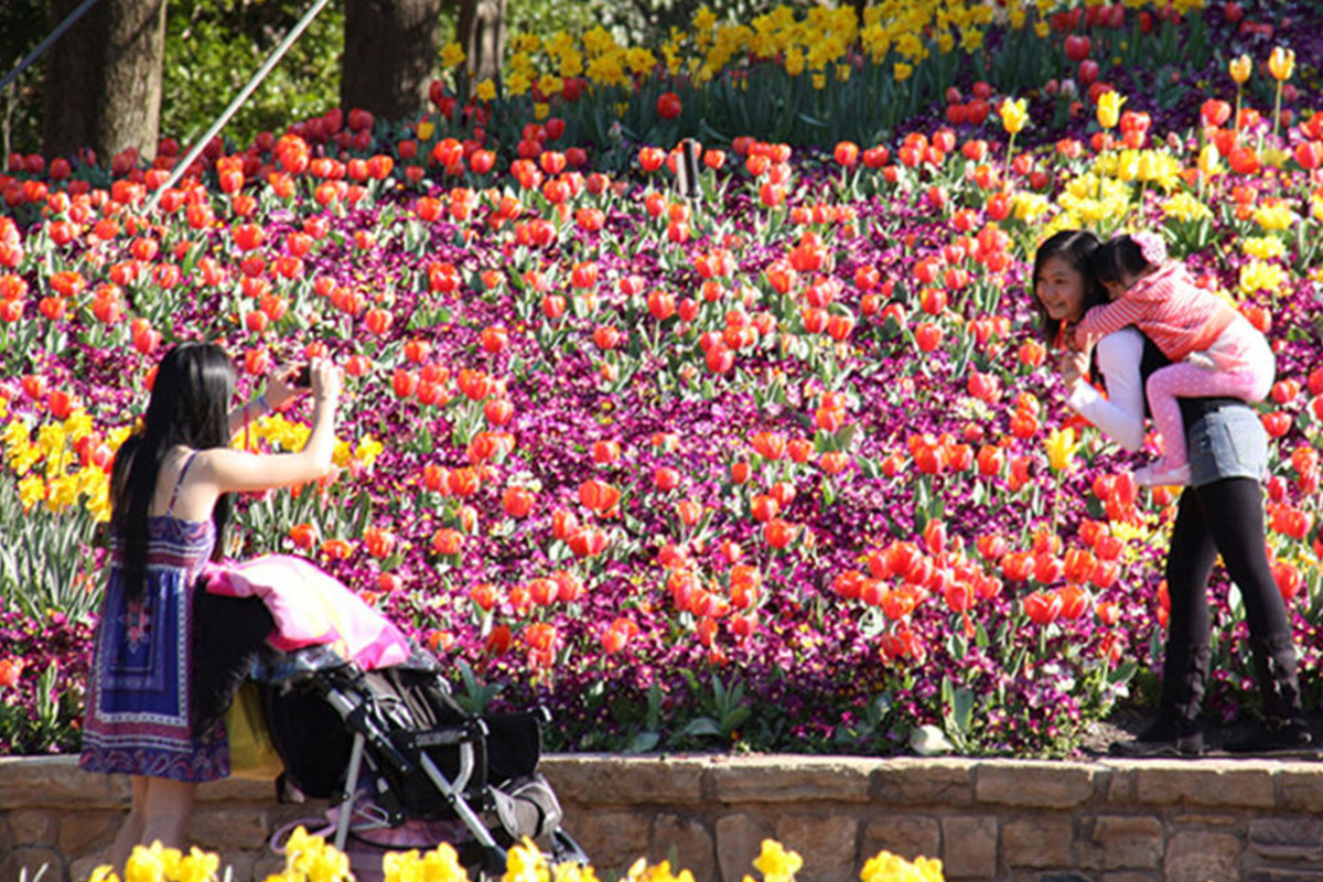 Floriade-in spring, Canberra